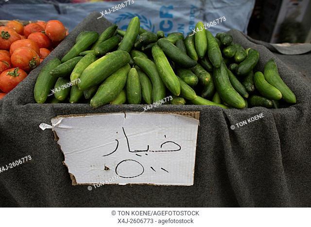 Tazade refugee camp near Kalar city (North Iraq), home to few thousand suni Arab Iraqi