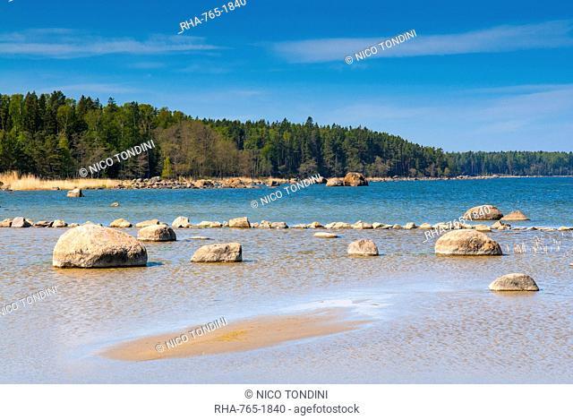 Baltic Sea, Vana-Juri Ots, Laane-Virumaa, Estonia, Baltic States, Europe