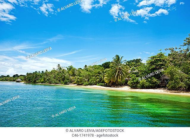 Bastimentos island, Bocas del Toro province, Caribbean sea, Panama