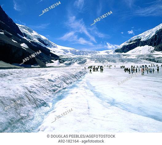 Athabasca glacier. Jasper NP. Canada
