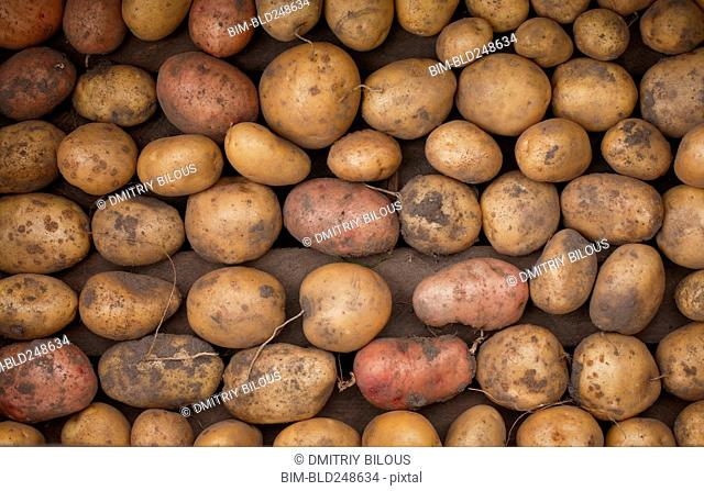 Potatoes in box