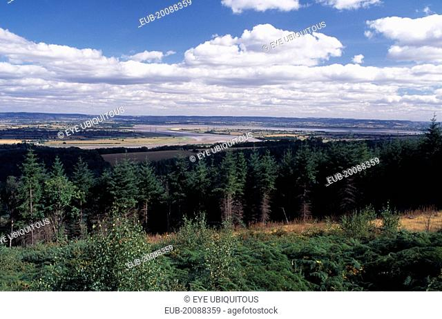 Landscape with coniferous plantation and bend in the River Seven beyond