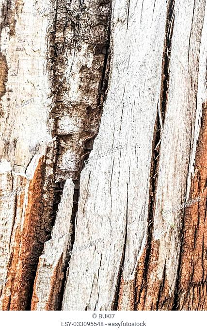 Photograph of old weathered cracked wooden cross-tie surface