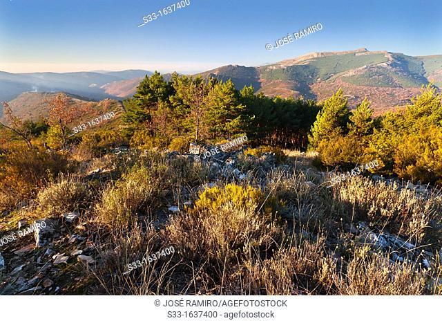 Sierra de la Puebla from the Cabeza Minga in the Sierra Norte  Madrid  Spain