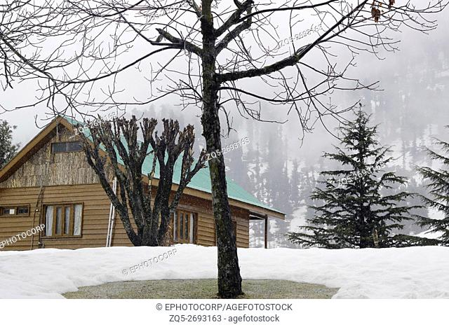 Snow clad houses and roads of Gulmarg, Jammu and Kashmir, India
