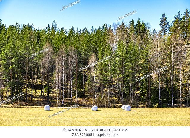 Hay bales on a field in Sweden