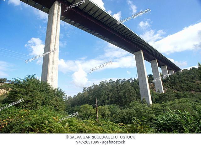 Motorway bridge 63 crossing the Asturian forest, Asturias, Spain, Europe