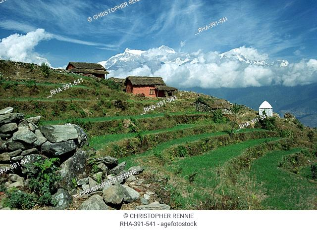 Terraced fields and shrine on a hill at Sarangkot with the Annapurna range of mountains in the background, near Pokhara, Nepal, Asia
