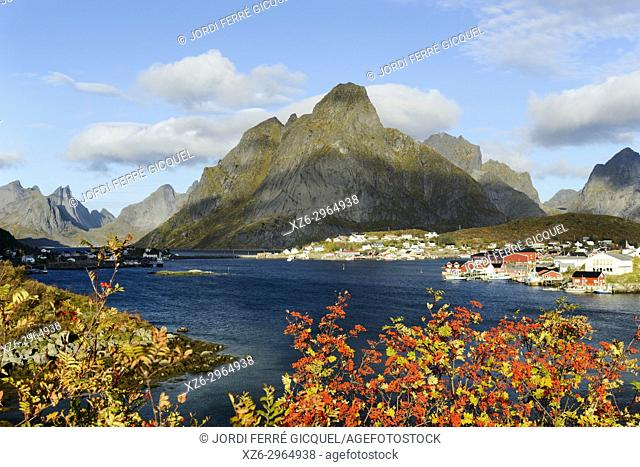 Fishing village of Reine, Moskenesøya island, Lofoten archipelago, county of Nordland, Norway, Europe