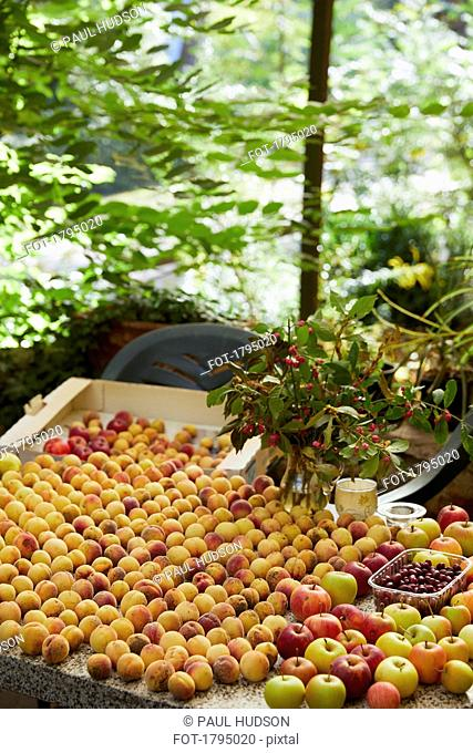 Freshly harvested peaches and apples