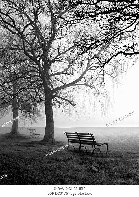 Park benches and birch trees in the morning mist at Newnham-on-Severn. In Roman times, three important roads including the major military coast road converged...