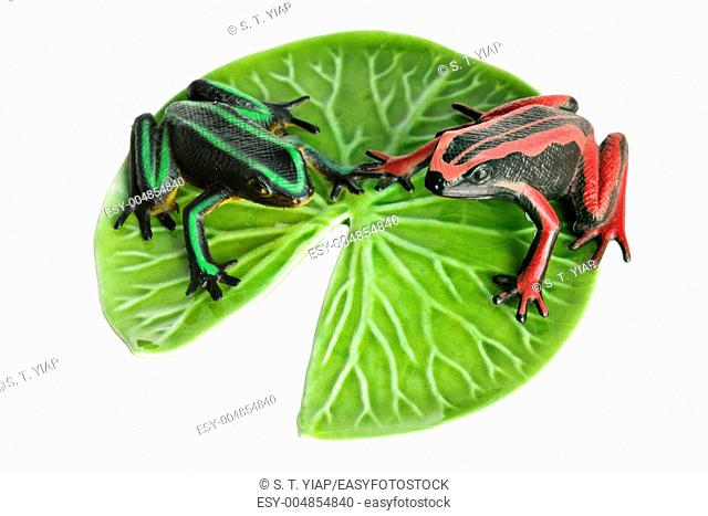 Frogs and Lotus Leaf on White Background