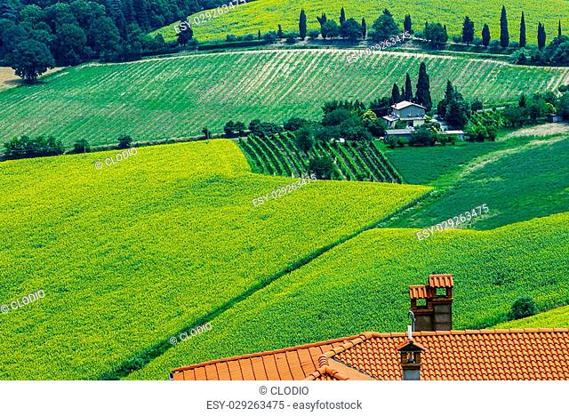 Landscape in Romagna at summer, near Bertinoro (Forli Cesena, Italy). Tiled roof, sunflowers, vineyards