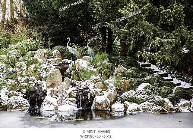 A rockery above a water pool with ice sheets on the water surface and yew trees above