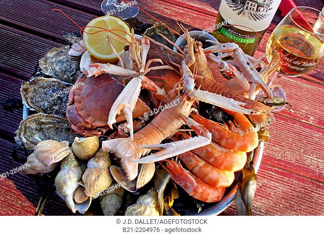 Seafood with Montravel dry white wine at Chez Huguette, Andernos, Bassin d'Arcachon, Gironde, Aquitaine, France