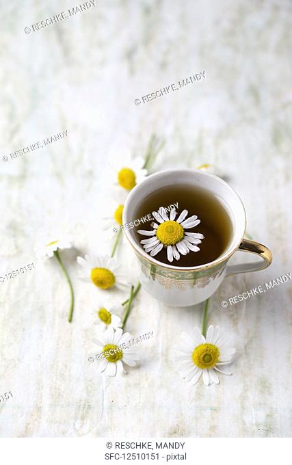 Chamomile tea with chamomile flowers in a cup
