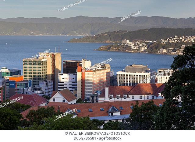New Zealand, North Island, Wellington, city skyline from the Wellington Botanic Gardens, dusk