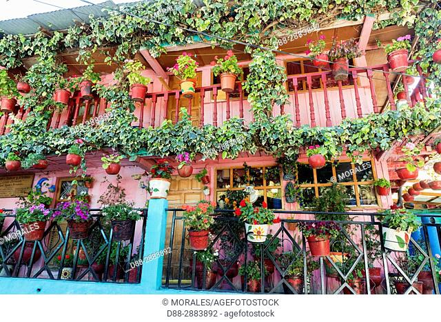 Central America, Mexico, State of Michoacan, Angangueo, Reserve of the Biosfera Monarca El Rosario, house with flowers