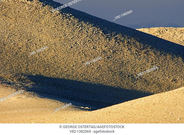 White Mountain slopes, Inyo National Forest, California