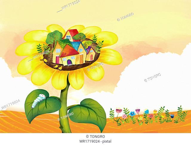 An autumn scene with a sun flower