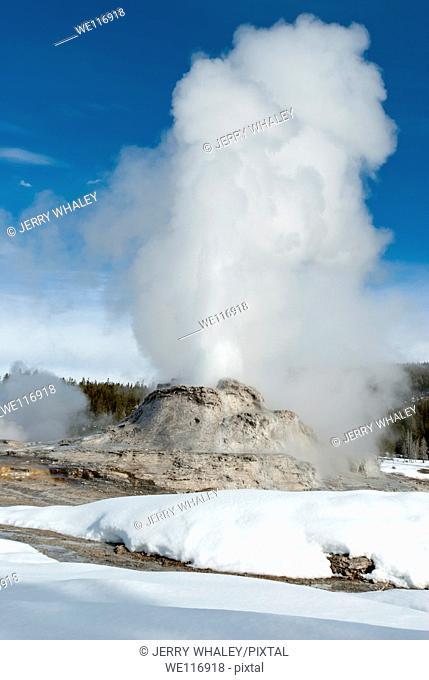 Castle Geyser Erupting, Yellowstone NP, WY