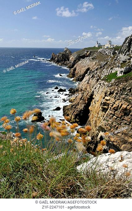 Pointe de Toulinguet in Brittany, France
