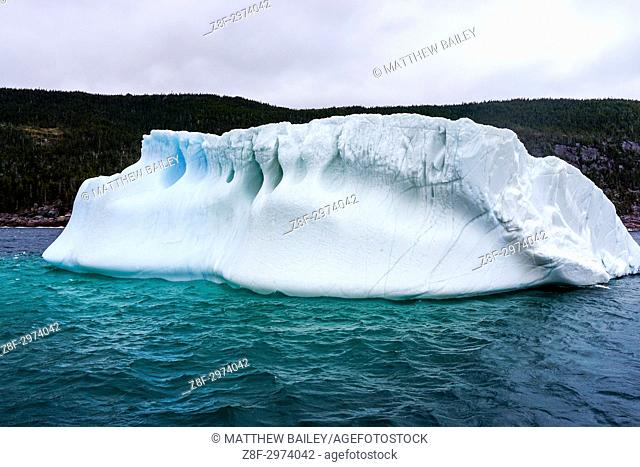Up close and personal with an iceberg in Newfoundland, Canada