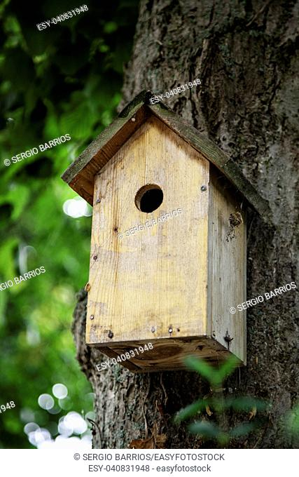 Wooden birdhouse, animal protection detail in the forest