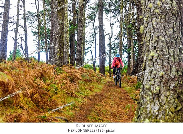 Woman mountain biking through forest