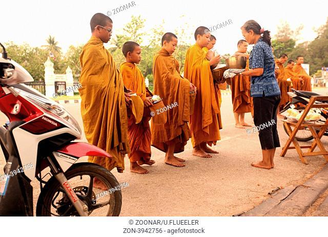 Moenche ziehen am fruehen morgen durch Alt-Sukhothai in der Provinz Sukhothai im Norden von Thailand in Suedostasien
