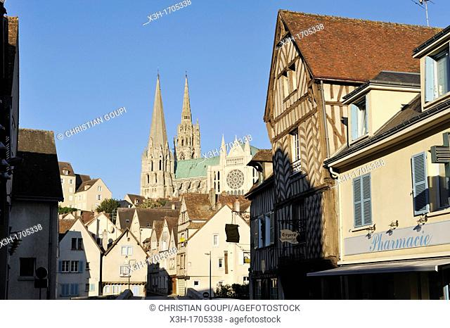 Guillaume Gate street with the Cathedral of Chartres background, Eure-et-Loir department, Centre region, France, Europe
