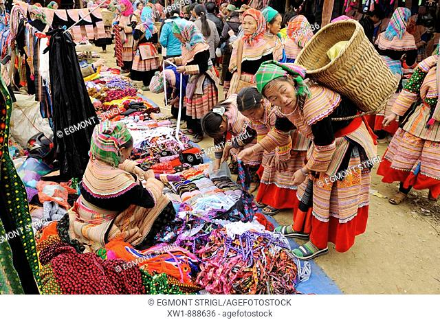 RM, licensed, no model release - editorial only woman of the Flower Hmong minority, mountain tribe, shopping, animal market of Bac Ha, Ha Giang province
