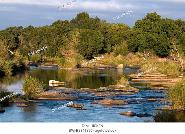 river at the Krueger National Park, South Africa, Mpumalanga, Krueger National Park