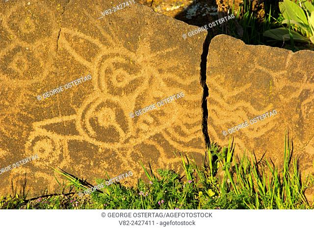 Petroglyph Trail rock art, Columbia Hills State Park, Columbia River Gorge National Scenic Area, Washington