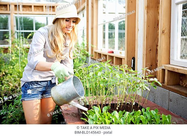 Caucasian woman watering plants in greenhouse