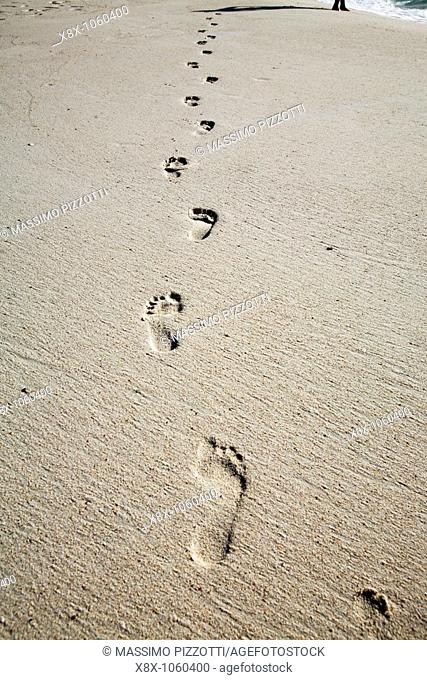 Human footprints on beach
