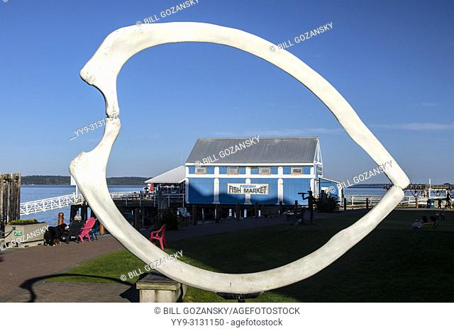 Whale Bones at Shaw Centre for the Salish Sea - Beacon Park - Sidney, Vancouver Island, British Columbia, Canada