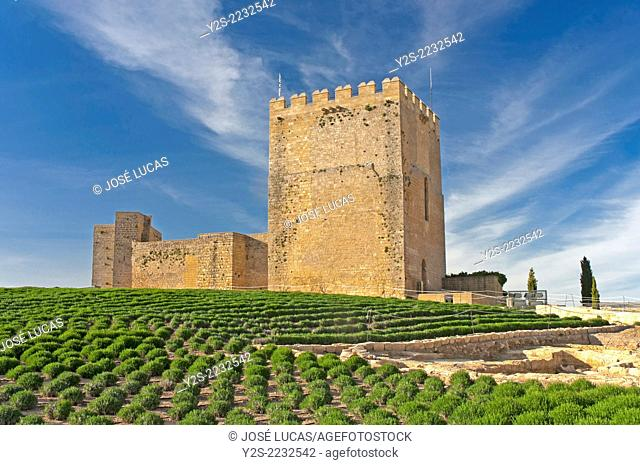 Alcazaba, La Mota fortress, Alcala la Real, Jaen-province, Region of Andalusia, Spain, Europe