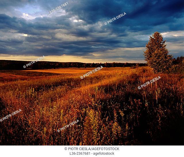 Poland. Podlasie region