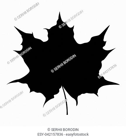 Maple leaf silhouette icon black color vector illustration flat style simple image