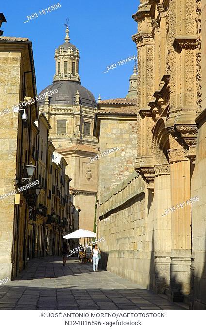 Salamanca, Calle de los Libreros  Via de la Plata, Libreros street, Castilla-Leon, Spain
