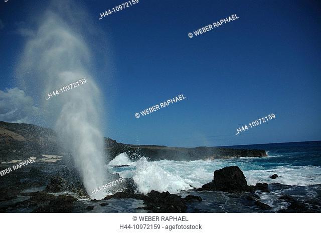 Ascension, Ascension Island, coast, sea, waves, blowhole, jet, fountain, foam, surf, rock, cliff