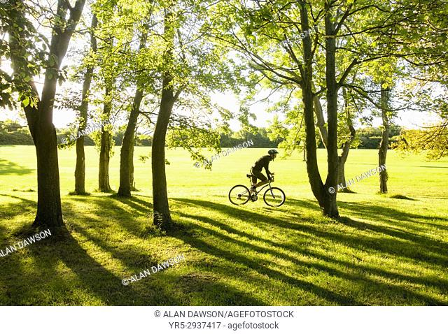 Billingham, north east England, UK. A mountain biker rides through Woodland in early morning sunshine