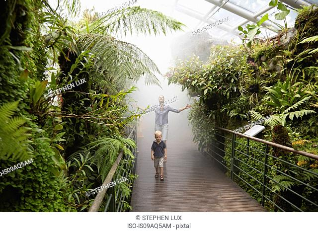 Boy and mother in humid tropical greenhouse, Botanical Gardens, Singapore