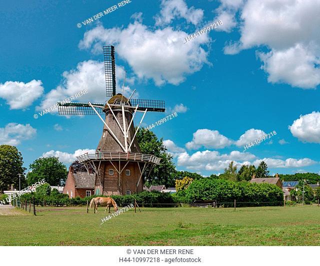 Norg, Drenthe, Smock mill called Noordenveld