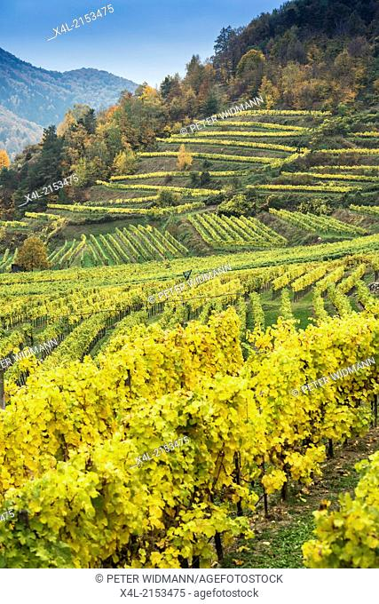 landscape, Austria, Lower Austria, Wachau