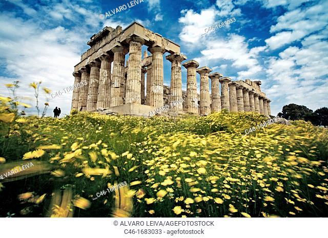 Ruins of Greek temple from seventh century BC  Province of Trapani, Selinunte, Sicily, Italy