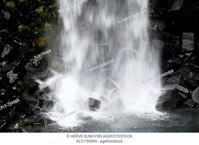 Detail of the famous waterfall Svartifoss in the nature reserve Skaftafell with his basaltic columns, Iceland
