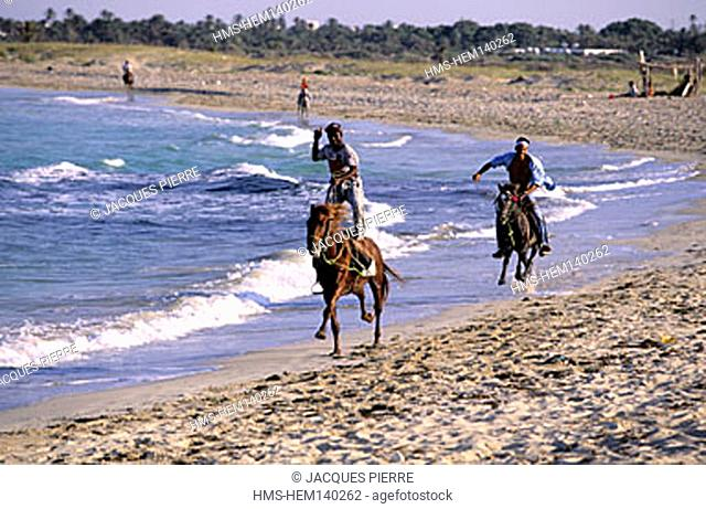 Tunisia, riding on the beach (Model Release OK)