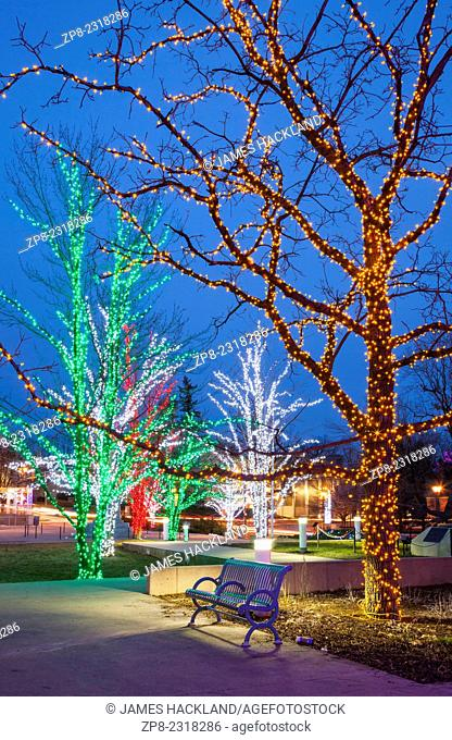 A park bench and illuminated trees near City Hall in downtown Brampton, Ontario, Canada